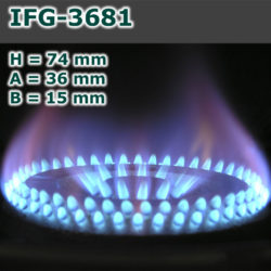IFG-3681-250x250