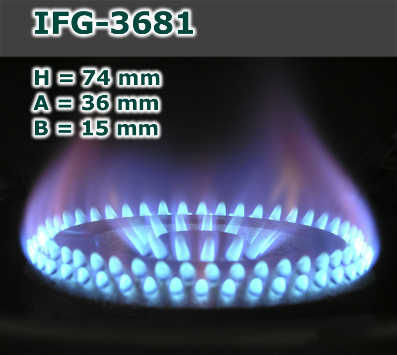 IFG-3681