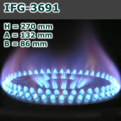 IFG-3691-250x250