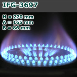 IFG-3697-250x250