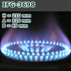 IFG-3698-250x250