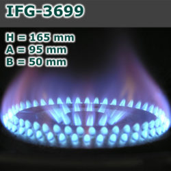 IFG-3699-250x250