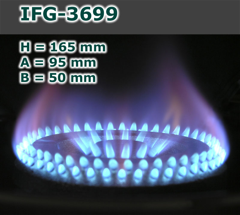 IFG-3699